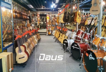 Professional musical instruments and instruments. Products in stock and under the order!